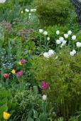 В Оптине очень красивые цветники и клумбы