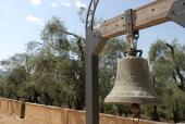 047. Сад оливковых деревьев монастыря